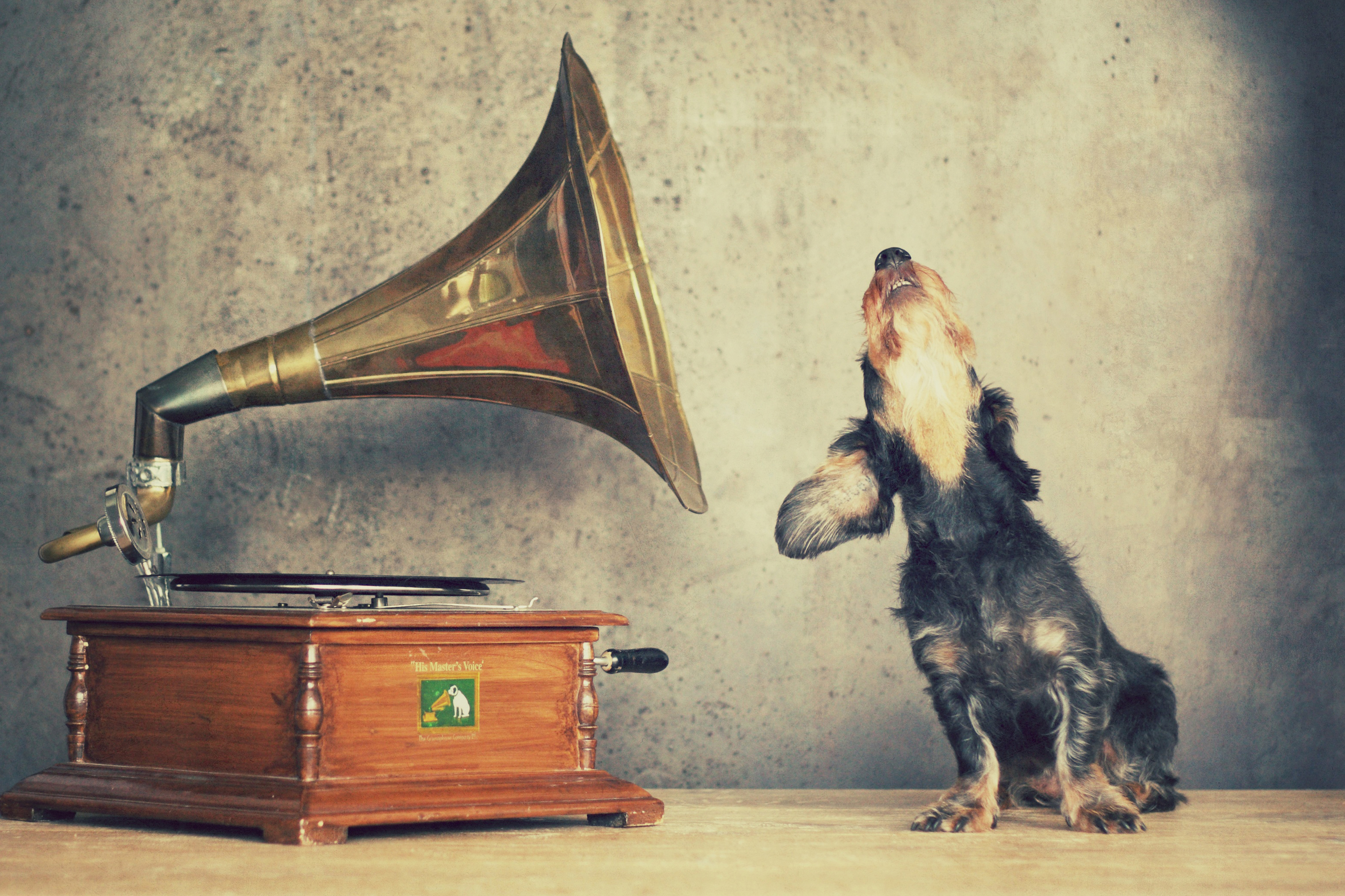 Amélie hört Musik gross